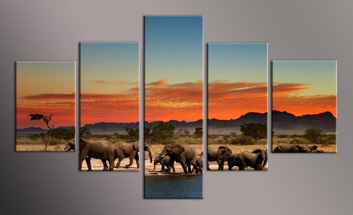 Obraz stáda slonů