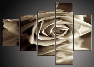 Černobílý obraz na stěnu růže