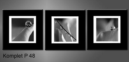 Černobílý obraz kapek rosy