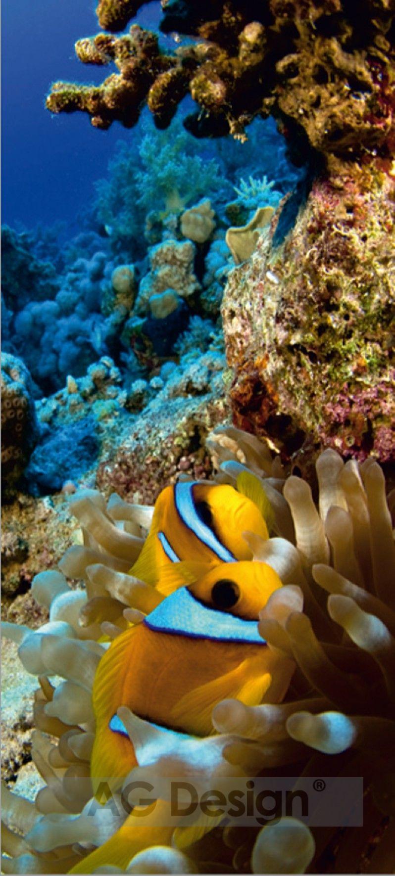 Fototapeta jednodílná - moře