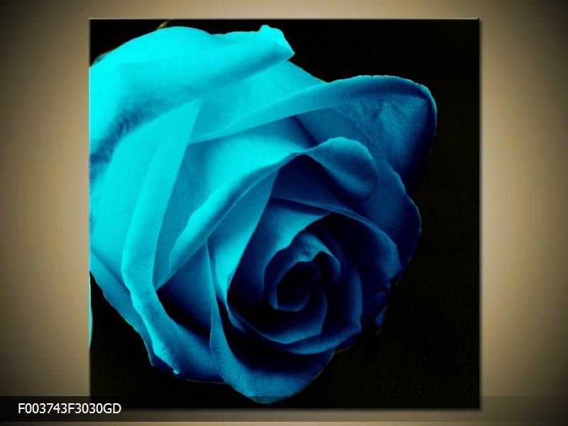 Obraz na skle modrá růže
