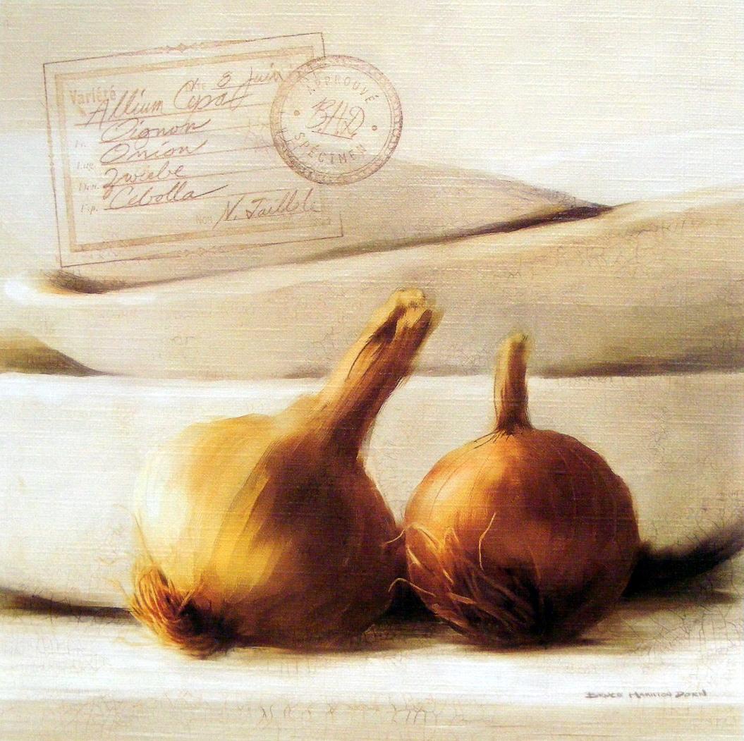 Kuchyňský obraz s cibulí