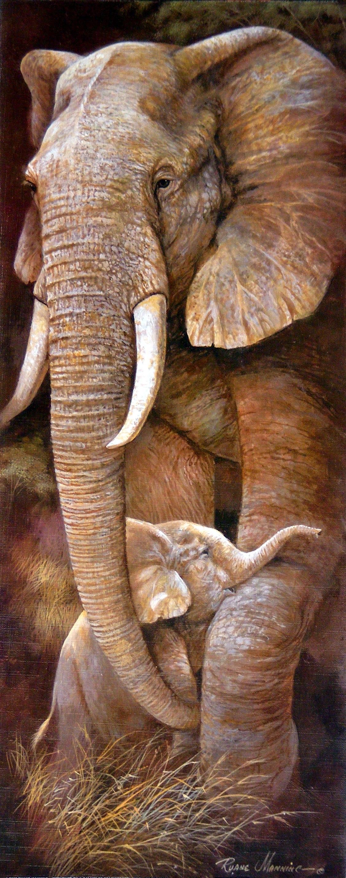 Obraz slona se slůnětem